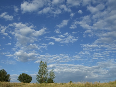 Late Summer Sky