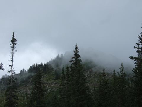 雲に覆われてきました、、、。
