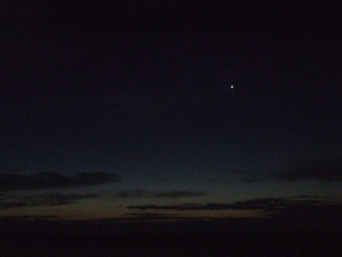 Venus at Dawn