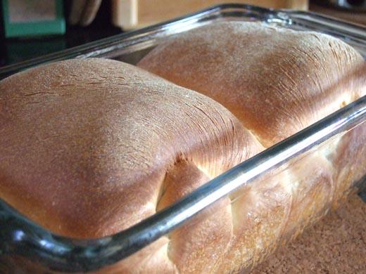 はじめての食パン:焼き上がり